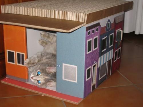Casetta cuccia di cartone per gatti e cagnolini jamaicaddictcommunity