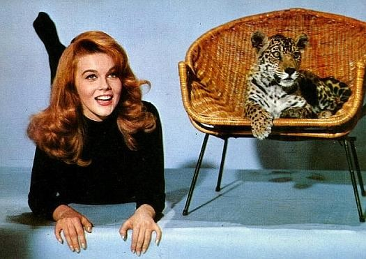 Ann margret e il suo gatto vanity farm - Ann diva del passato ...