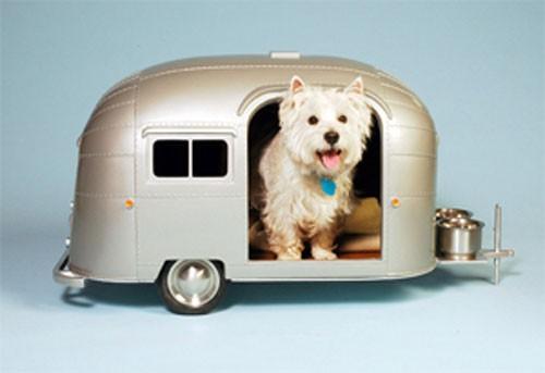 Pet-Camper-4.jpg