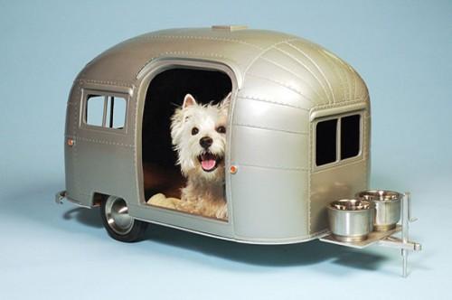 pet-camper1.jpg