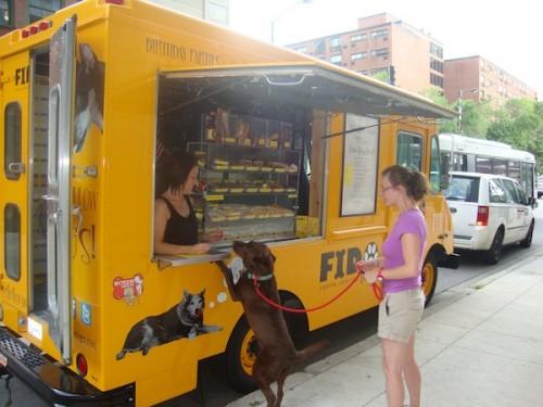 notizie animali, notizie divertenti, notizie strane, notizie commoventi, cani, cibo per cani, catering mobile per cani, Fido To Go