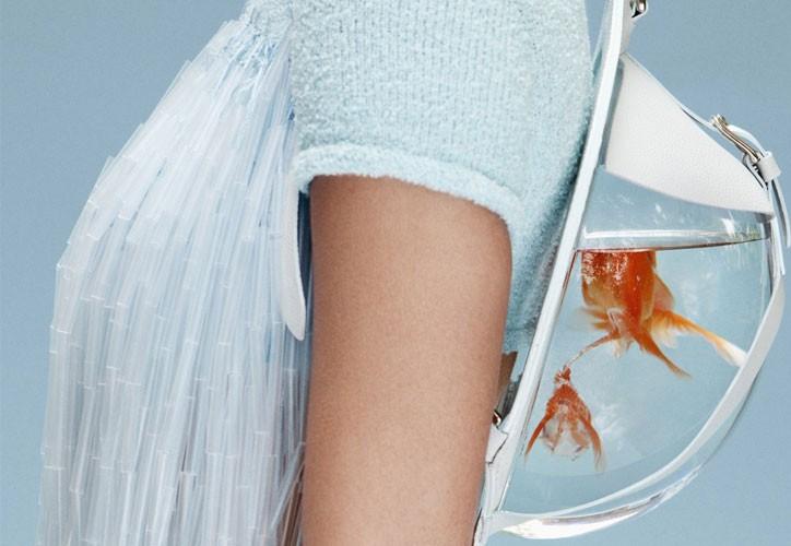 Le borse e gli zaini che contengono una boccia per pesci for Sabbia per acquario pesci rossi