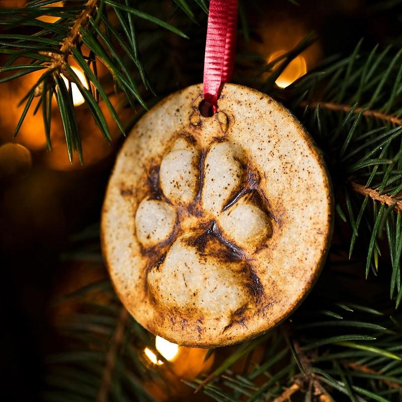 Biscotti Decorati Per Albero Di Natale.Decorazioni E Biscotti Per L Albero Di Natale A Forma Di Zampa