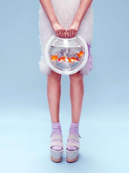 Le borse e gli zaini che contengono una boccia per pesci for Boccia pesci
