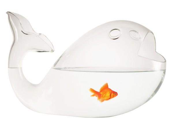 Acquario a forma di balena vanity farm for Vaschetta per pesci rossi prezzi