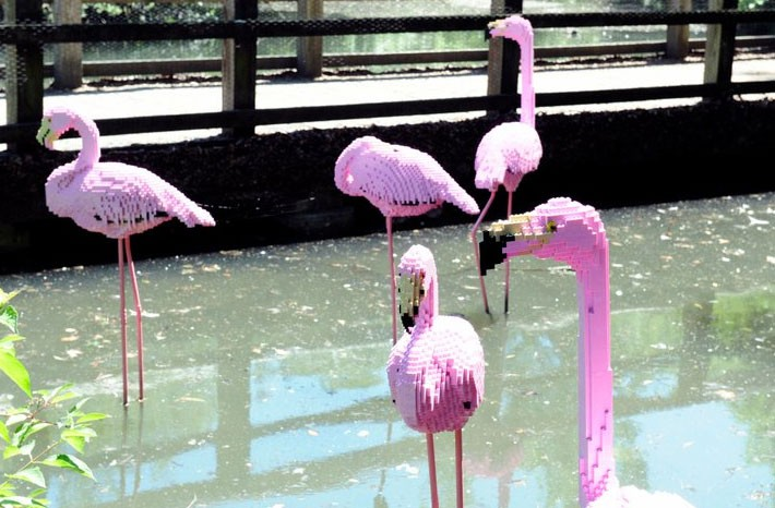 Mostra di animali di lego allo zoo del bronx vanity farm for Piani di fattoria a grandezza naturale